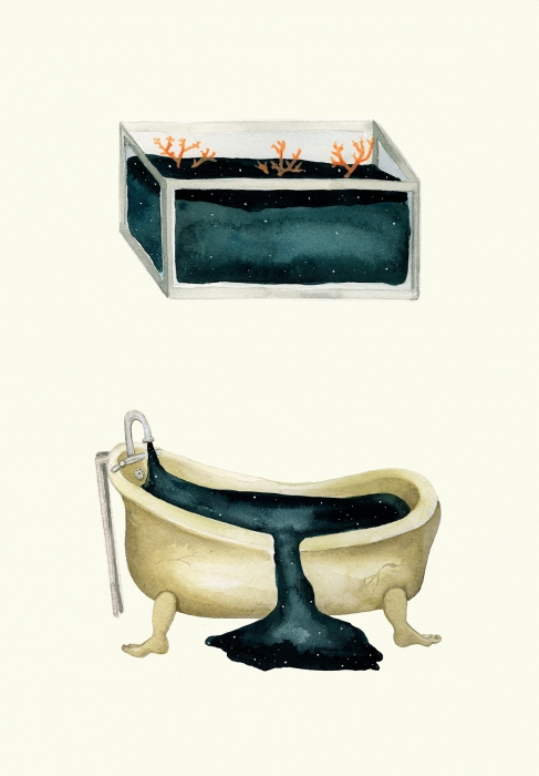 Tub & Tank | Eva Dominelli Illustration
